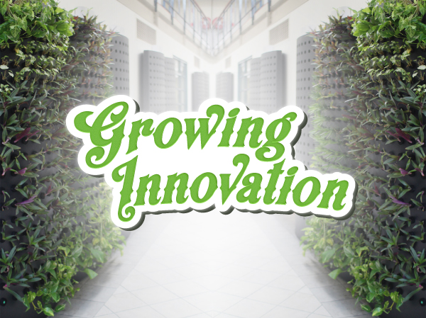 growing innovation